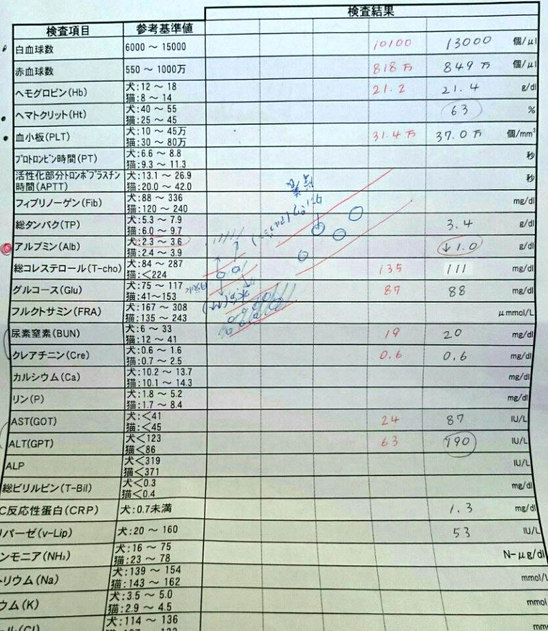 f:id:masami_takasu:20171126065512j:plain