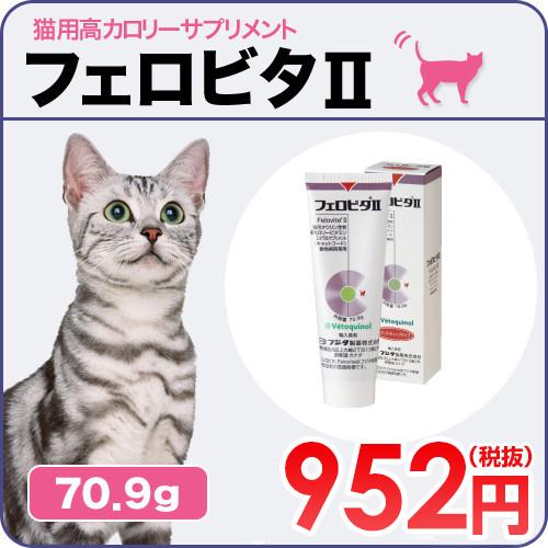 f:id:masami_takasu:20180201082615j:plain