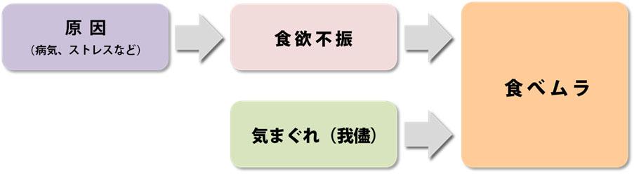 食べムラ_食欲不振_関係図