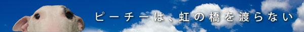 f:id:masami_takasu:20180313123919j:plain