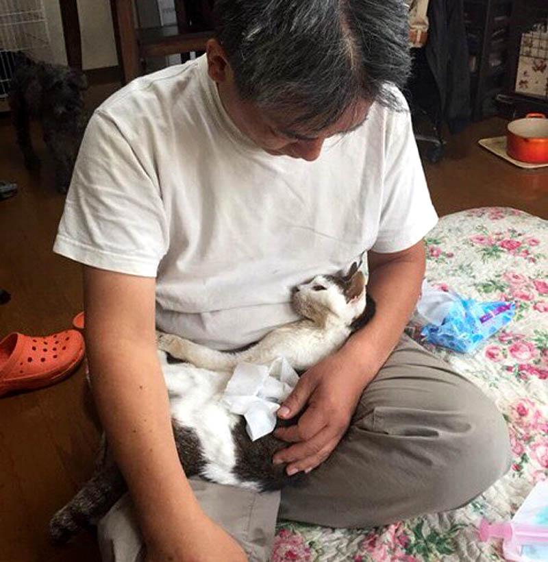 f:id:masami_takasu:20180317110829j:plain