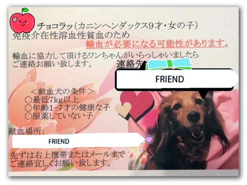 f:id:masami_takasu:20180613150004j:plain