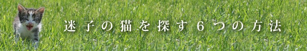 f:id:masami_takasu:20180625174840j:plain