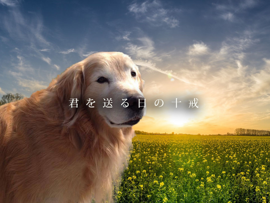 f:id:masami_takasu:20180817142217j:plain