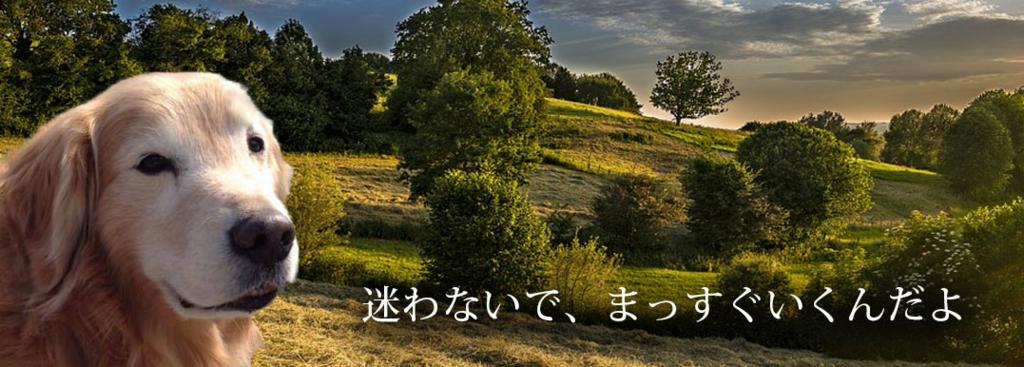 f:id:masami_takasu:20180817142322j:plain