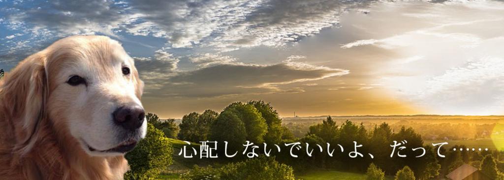 f:id:masami_takasu:20180817142339j:plain