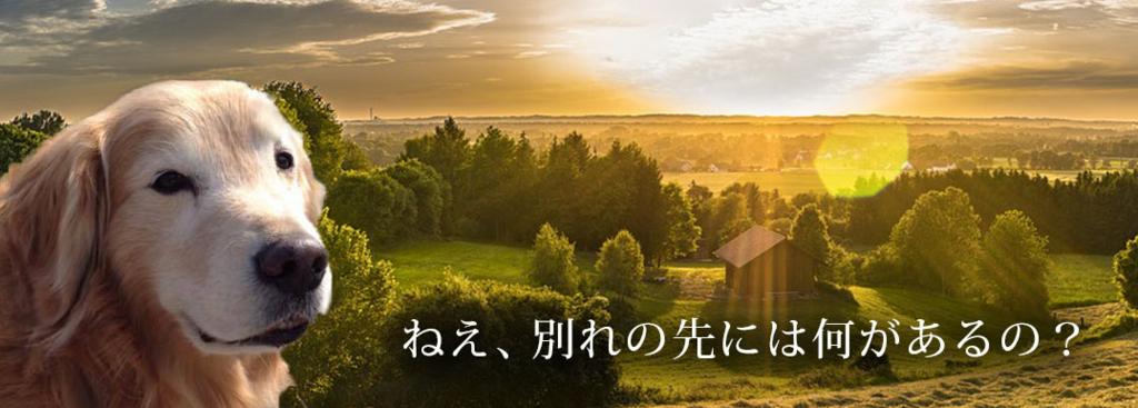 f:id:masami_takasu:20180818141444j:plain