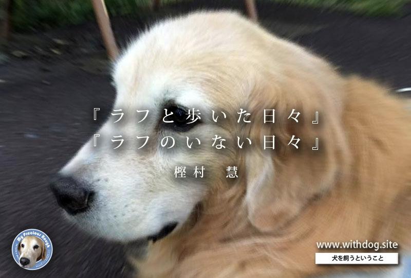 f:id:masami_takasu:20181003124918j:plain