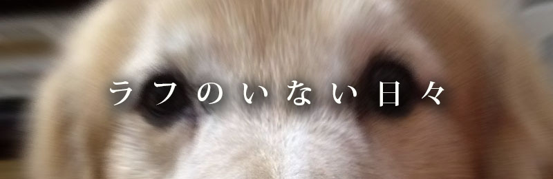 f:id:masami_takasu:20181003130157j:plain