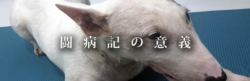f:id:masami_takasu:20181003172705j:plain