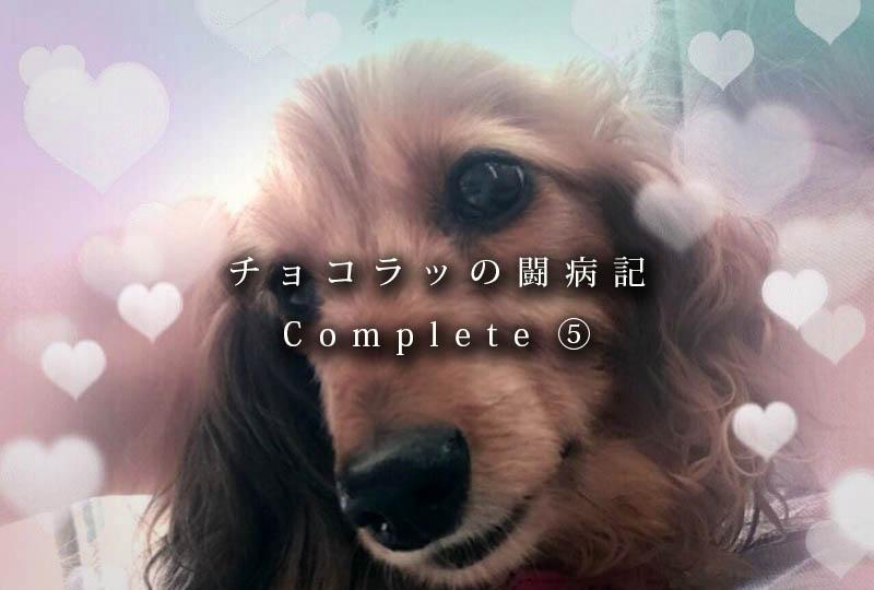 f:id:masami_takasu:20181004123707j:plain