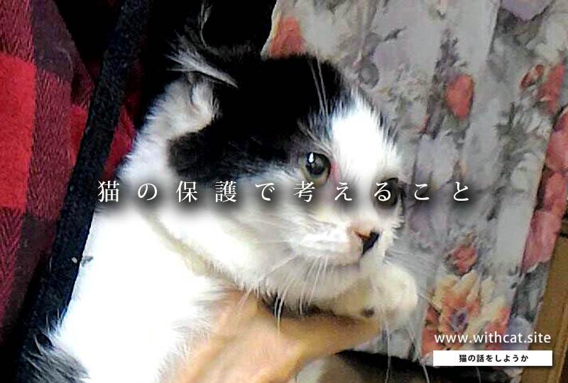 f:id:masami_takasu:20181005001844j:plain