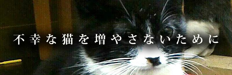 f:id:masami_takasu:20181005003523j:plain