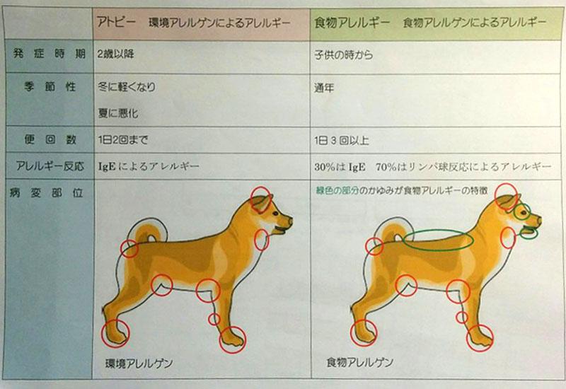 f:id:masami_takasu:20181007124447j:plain