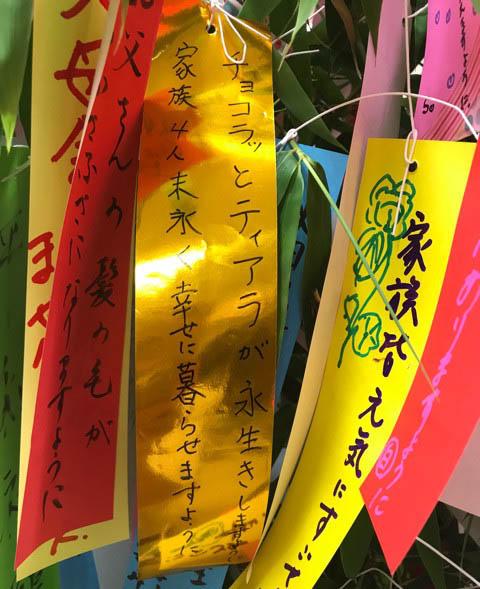 f:id:masami_takasu:20181008205317j:plain