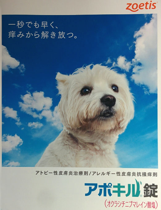 f:id:masami_takasu:20181112094344j:plain