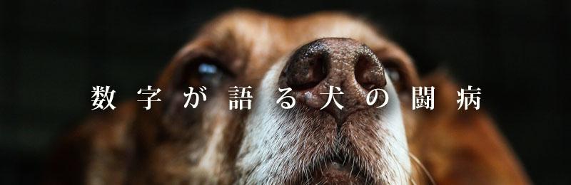 f:id:masami_takasu:20181113162858j:plain