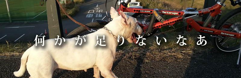 f:id:masami_takasu:20181201190949j:plain