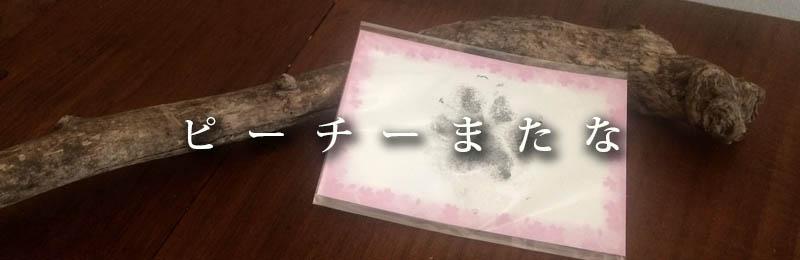 f:id:masami_takasu:20181201191108j:plain