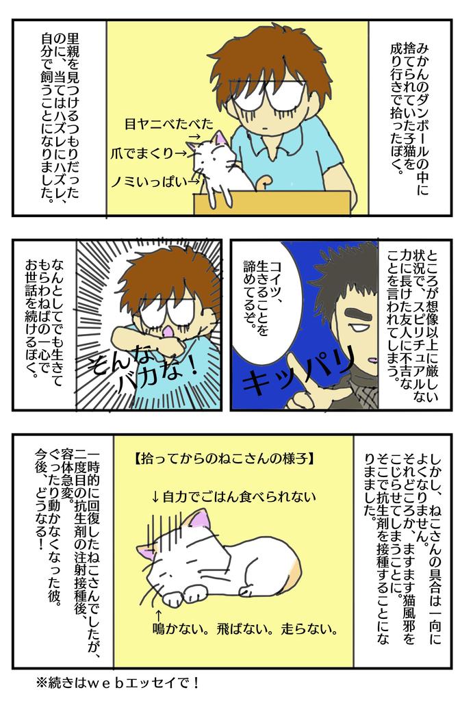 f:id:masami_takasu:20181202040503j:plain