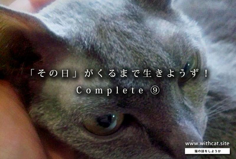 f:id:masami_takasu:20181211131749j:plain