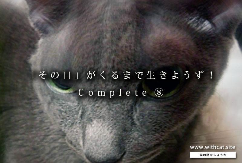 f:id:masami_takasu:20181211132109j:plain