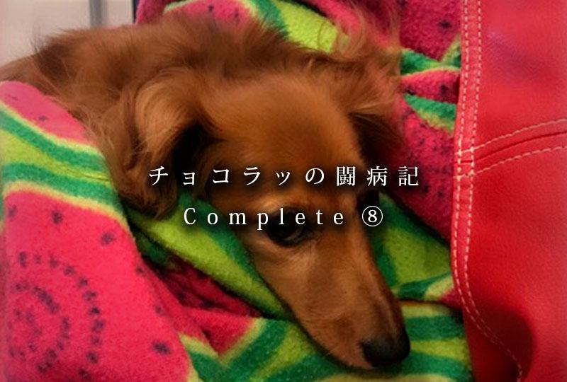 f:id:masami_takasu:20181222130137j:plain