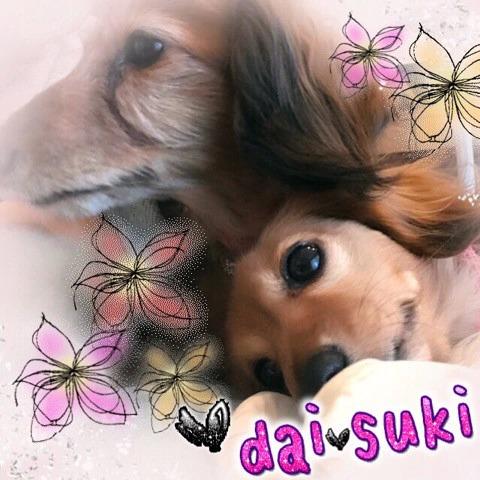 f:id:masami_takasu:20190103153836j:plain