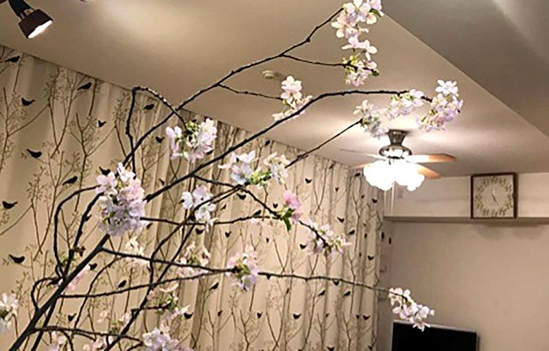 f:id:masami_takasu:20190123133755j:plain