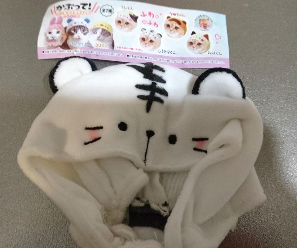 f:id:masami_takasu:20190213114508j:plain