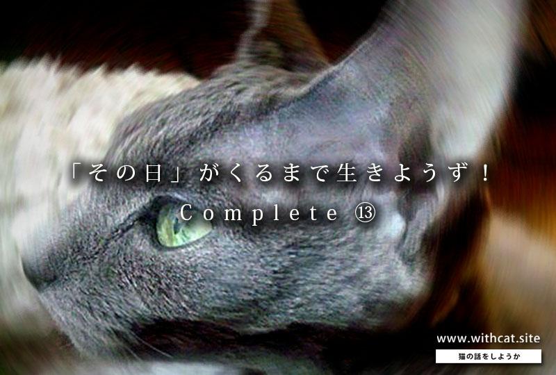 f:id:masami_takasu:20190225123423j:plain