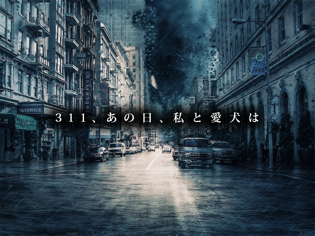 f:id:masami_takasu:20190306012831j:plain