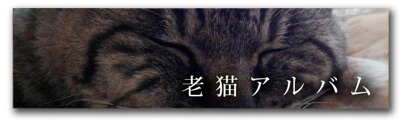 老猫アルバム