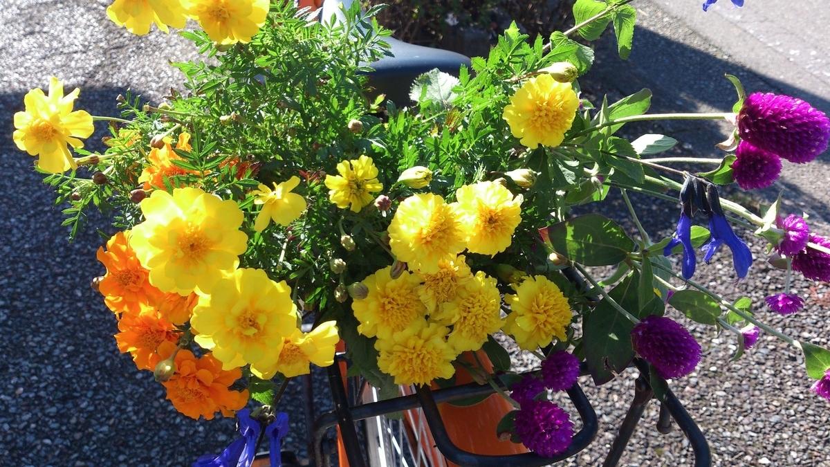 エリザベスと花