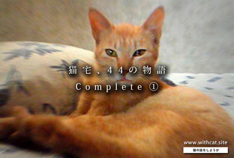 猫宅の話_扉①