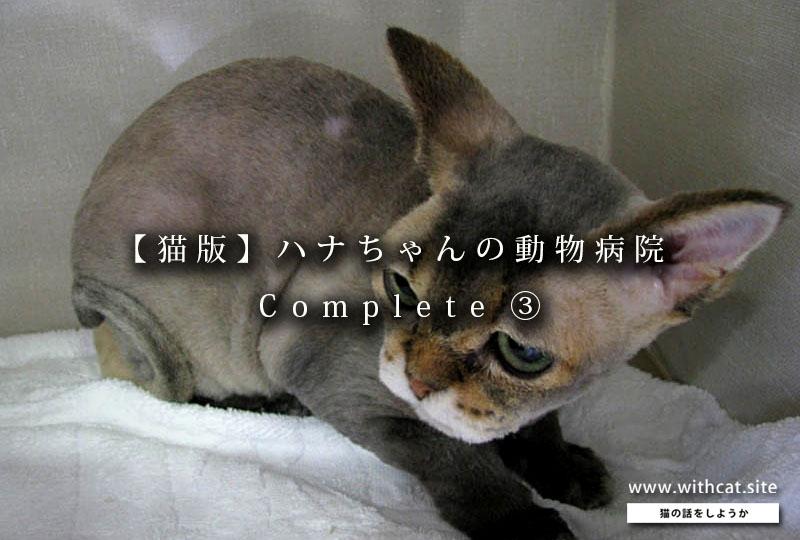 猫の診察記の扉