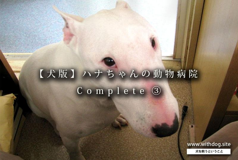 ハナちゃんの動物病院_扉