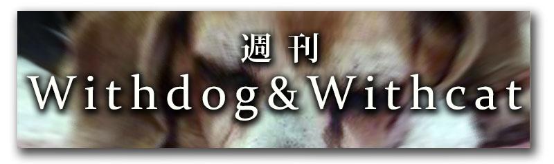 週刊Withdog&Withcat