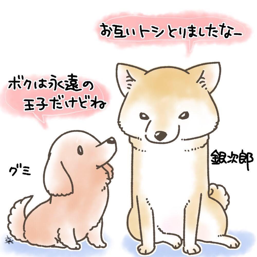 f:id:masami_takasu:20190714122447j:plain