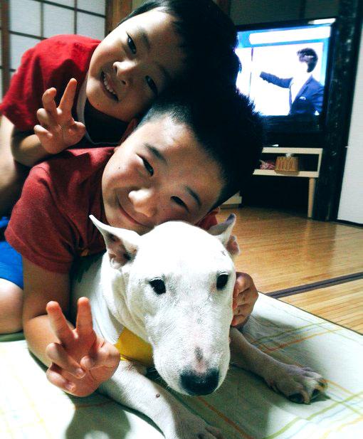 f:id:masami_takasu:20190726175825j:plain