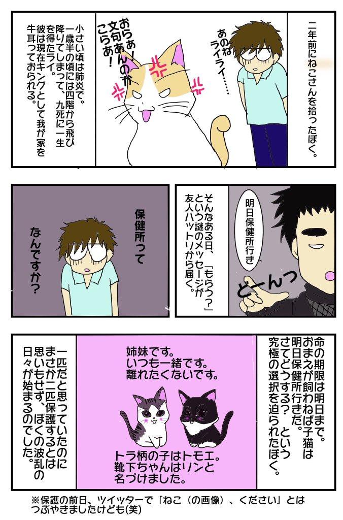 漫画で解説_あらすじ