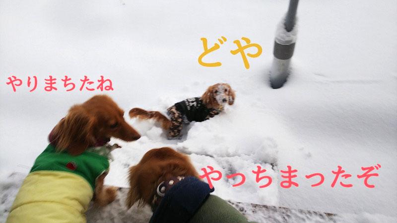 f:id:masami_takasu:20210607141413j:plain