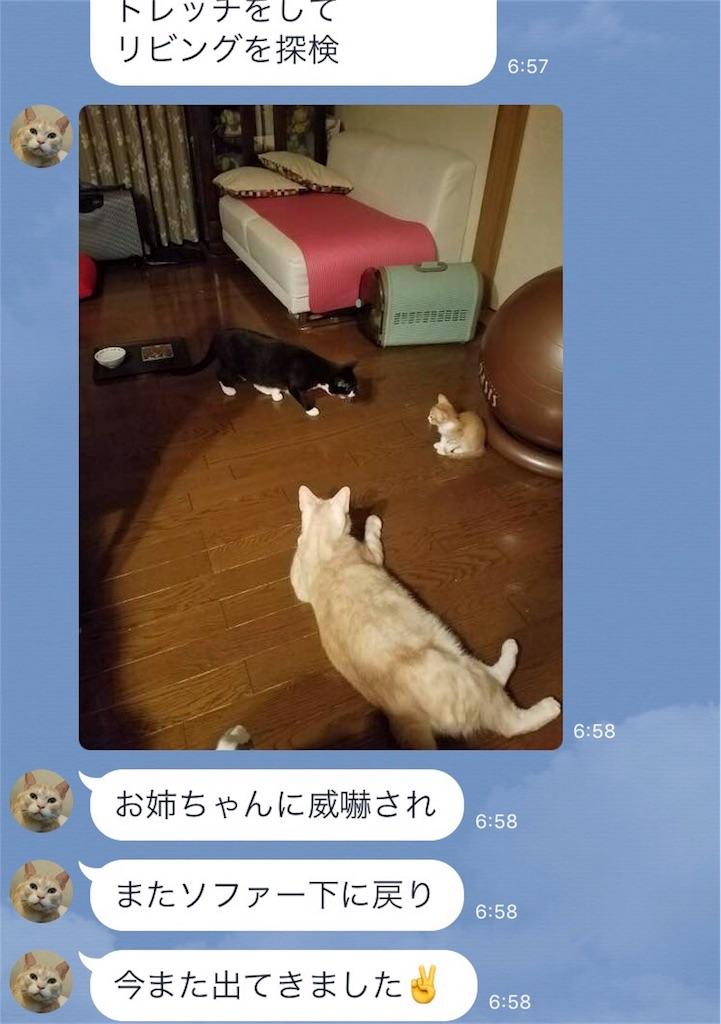 f:id:masamin0104:20170806080911j:image