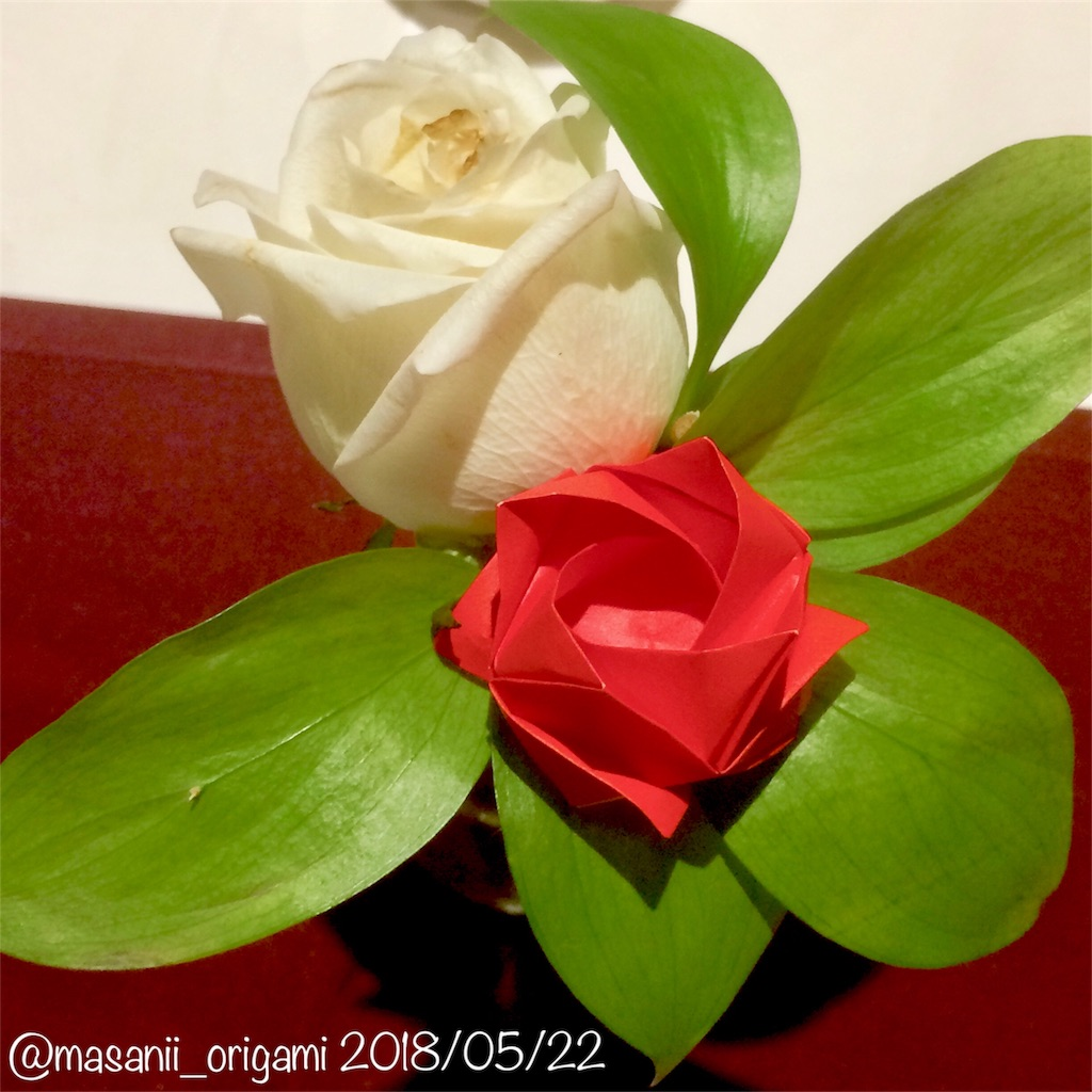 f:id:masanii_origami:20180522221153j:image