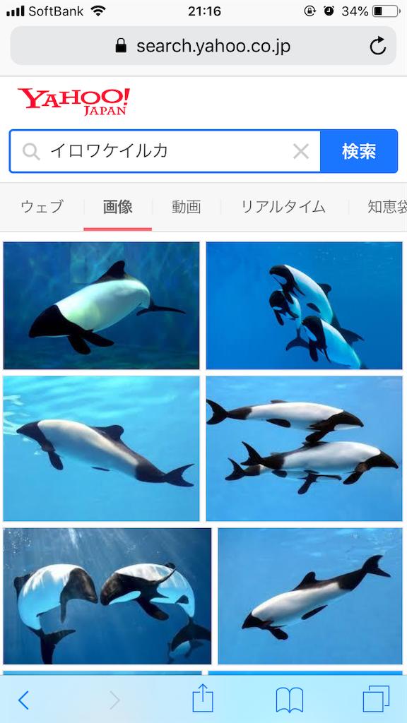 f:id:masanii_origami:20190106224111p:image
