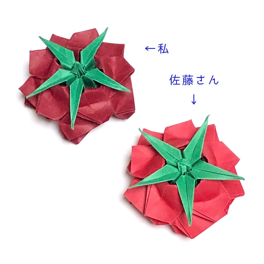 f:id:masanii_origami:20190724211103j:image