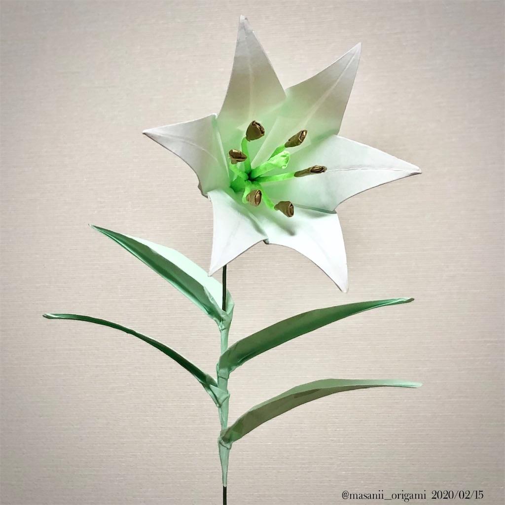 f:id:masanii_origami:20200214214234j:image