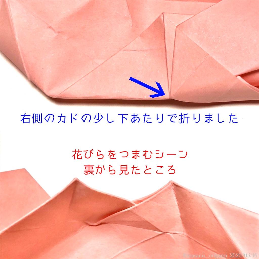 f:id:masanii_origami:20200316223135j:image