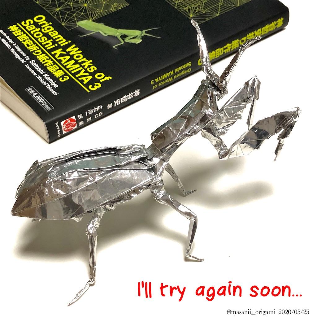 f:id:masanii_origami:20200525214625j:image