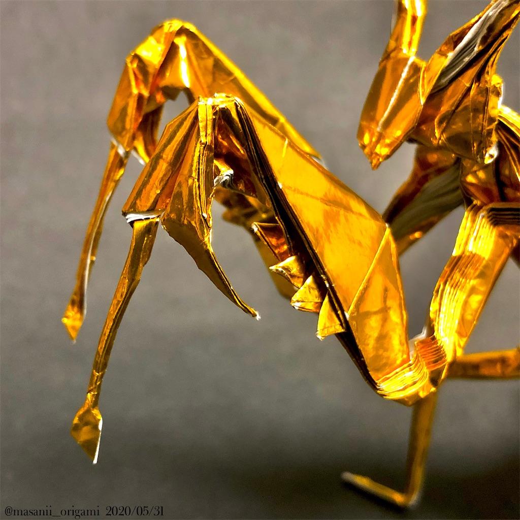f:id:masanii_origami:20200531013621j:image